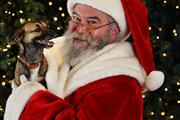 Quiet grottos feature in Dobbies 2021 Christmas events programme